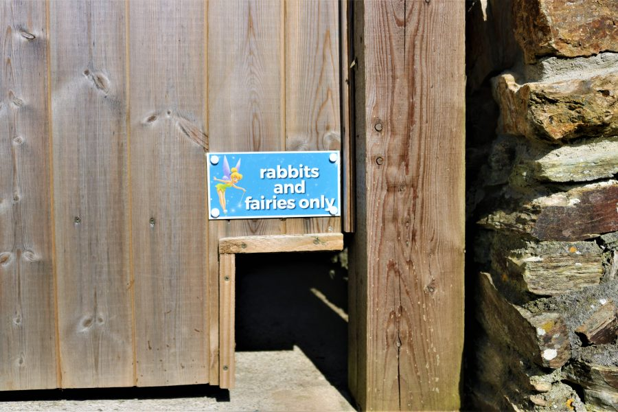 Rabbits and Fairies gate